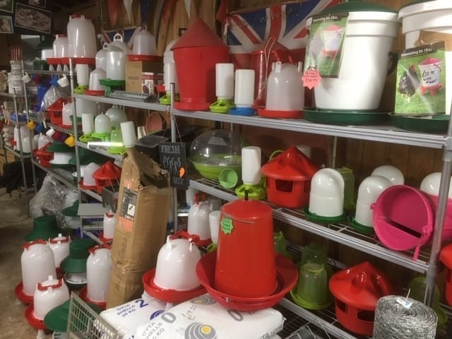 Wisging Wells Farm Feeders and Drinker for Poultry Ducks and Geese