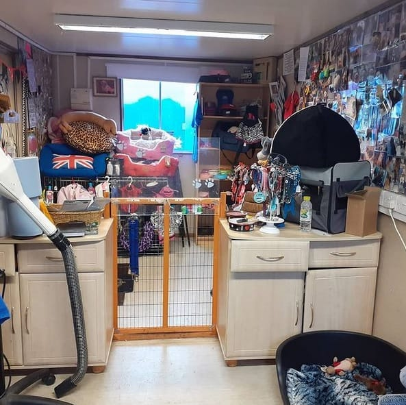 Shelly's Dog Grooming Services Sussex