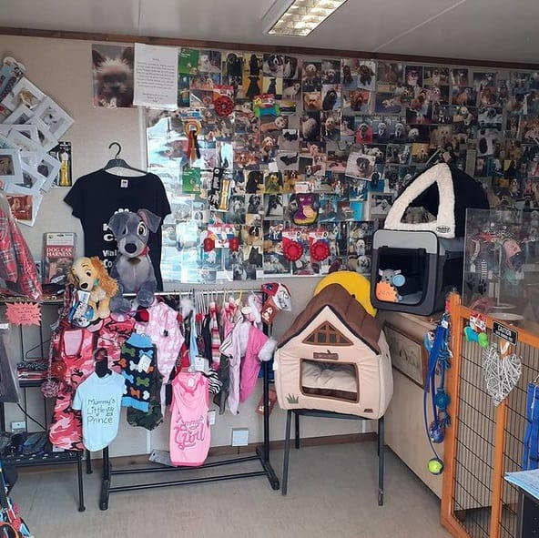 Shelly's Dog Grooming Supplies 2 Sussex